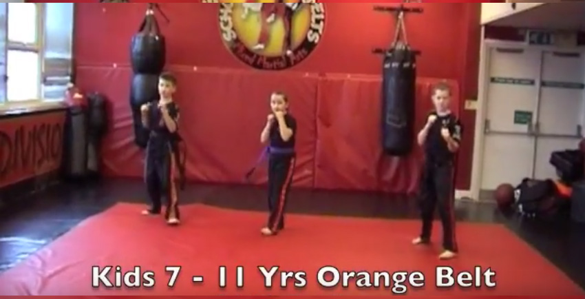Orange Belt Syllabus – 7 – 11 Yrs