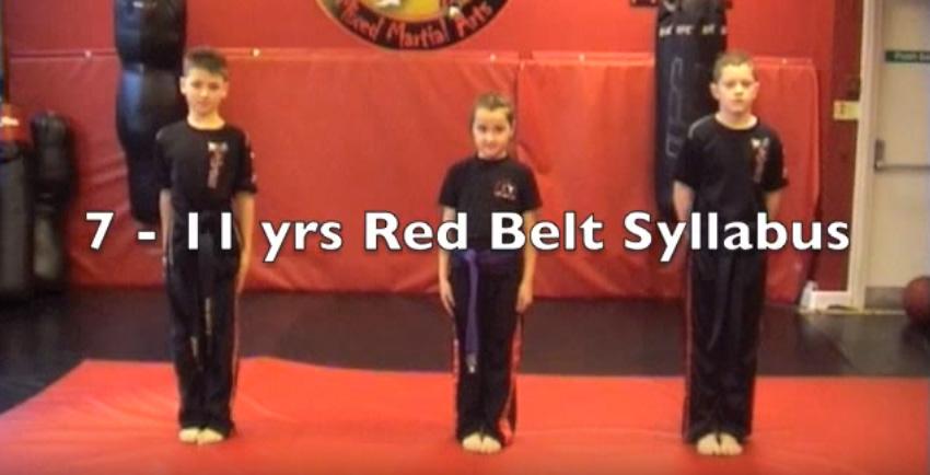 Red Belt Syllabus – 7 – 11 Yrs