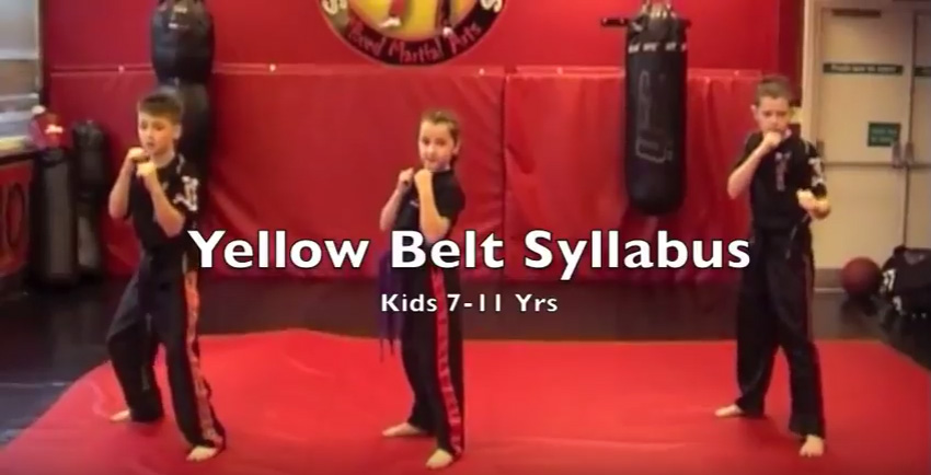 Yellow Belt Syllabus – 7 – 11 Yrs